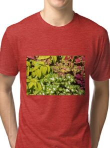 Colorful pattern of leaves Tri-blend T-Shirt