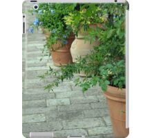 Plants in flower pots on the pavement iPad Case/Skin