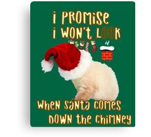 Cat Christmas Gifts for People a Cute Kitten Gift idea Canvas Print
