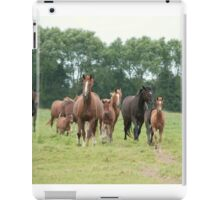 Mares and foals, Normandy iPad Case/Skin