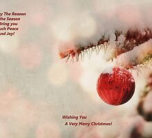 A Christmas Greeting Card 2014 by carolynrauh