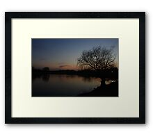 A Bare Willow Tree Framed Print