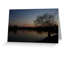 A Bare Willow Tree Greeting Card