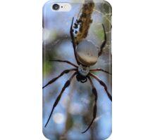 Spider in Web iPhone Case/Skin