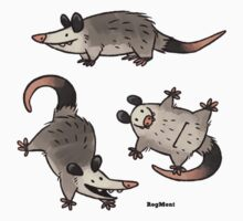Simply Opossum by RogMont