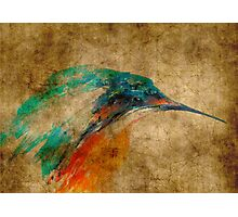 Kingfisher acrylics on paper textures Photographic Print