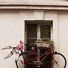 Not Enough Street Parking I Guess © by © Hany G. Jadaa © Prince John Photography