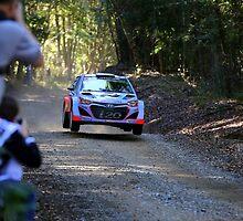 Hyundai WRC i20 by evolutionx