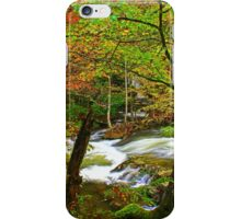 MIDDLE PRONG LITTLE RIVER iPhone Case/Skin