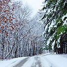 A Pretty Winter Drive  by lorilee