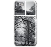 """""""The best time to plant a tree was 20 years ago.  The next best time is now."""" Chinese Proverb iPhone Case/Skin"""