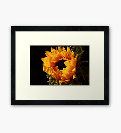 The Sun on Earth ... and She Shines  Framed Print