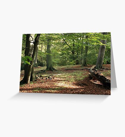 Tranquil Spaces Greeting Card