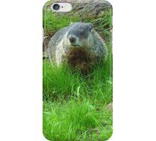 Chuckster iPhone Case/Skin