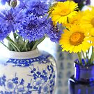 Blue and yellow by Julie Sherlock