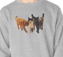 Three cats!  Pullover