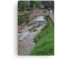 Water Ditch Beside the Tombstone Cyn. Rd. in Bisbee Canvas Print