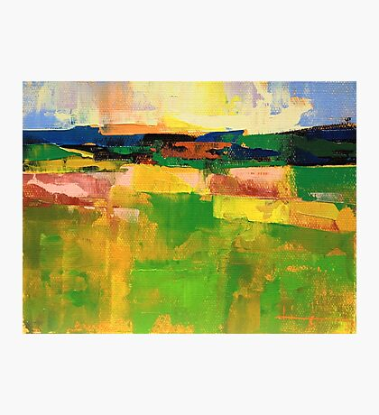 Field 902 Photographic Print