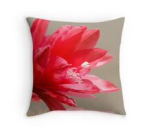 succulent plant Throw Pillow