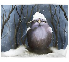 Little owl in the snow Poster