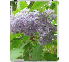 Lilac 3 iPad Case/Skin