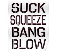 SUCK, SQUEEZE, BANG, BLOW. 4 stroke engine, Car, Jet engine, Internal combustion Poster