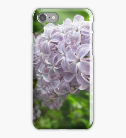 Lilac 2 iPhone Case/Skin