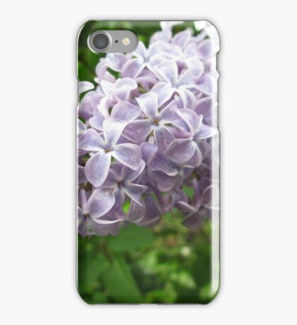 Lilac 1 iPhone Case/Skin