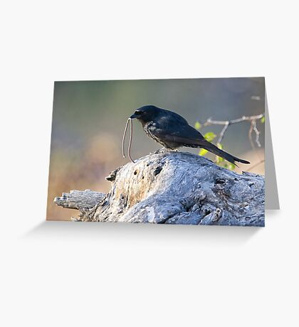 The Early Bird Catches The Worm Greeting Card