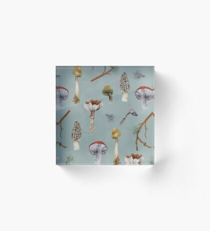 Mushroom Forest Collecting Party Acrylic Block