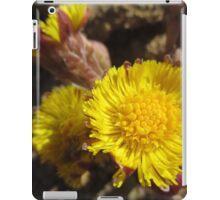 Like Flowers in a Desert  iPad Case/Skin