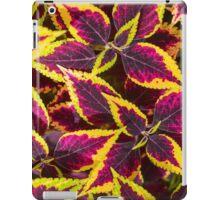 Coleus or Painted Nettle  iPad Case/Skin