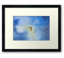 Yokosuka - Hawk In Flight 2 Framed Print
