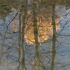 Winter Trees Reflection by Adrian Wale