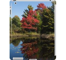 Red and Green - the Arrival of Autumn iPad Case/Skin