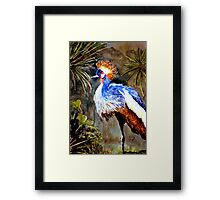 Exotic bird Framed Print