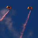 Paratroopers by Laura Puglia