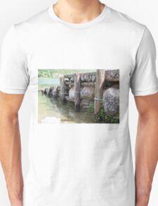 lake scape T-Shirt