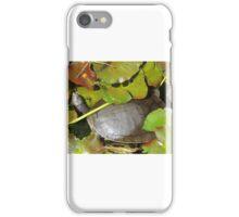 Turtle Greenery iPhone Case/Skin
