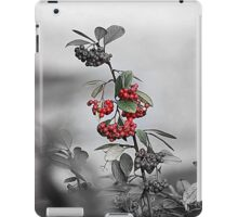 red berries in the garden iPad Case/Skin