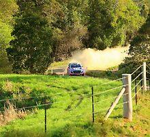 Hyindai i20 WRC by evolutionx
