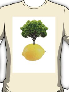Lemon Tree  T-Shirt