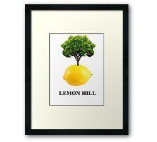 Lemon Hill Framed Print