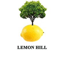 Lemon Hill Photographic Print