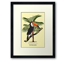 Toucan Tropics Framed Print