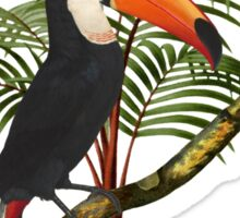 Toucan Tropics Sticker