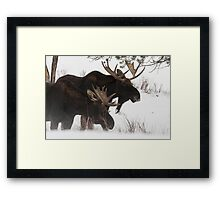 Moose Bros. #2 Framed Print