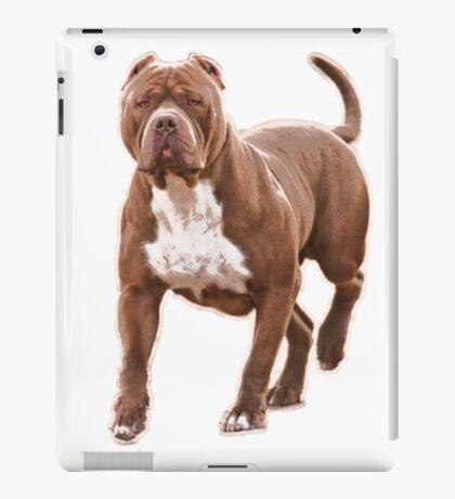 Pit bull brown 2 iPad Case/Skin