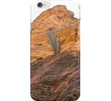 Red Rocks and Patterns iPhone Case/Skin