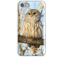 Beautiful Barred iPhone Case/Skin